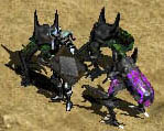 월 - beetleburst.jpg
