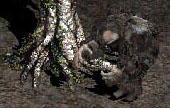 월 - treehead-woodfist1.jpg